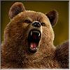 Brukerens avatar