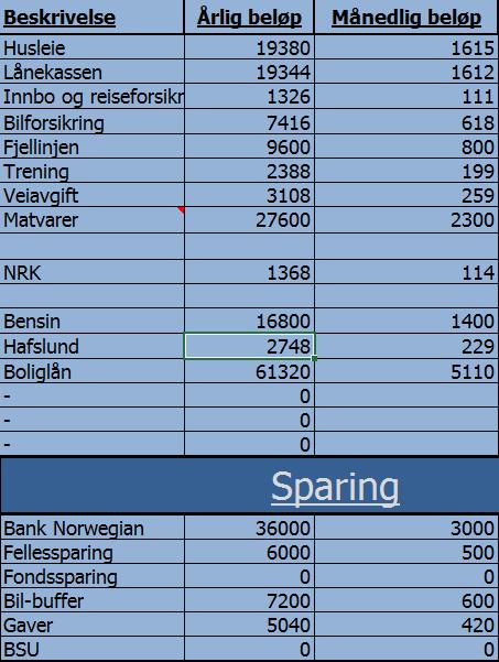 Enkle månedlige utgifter